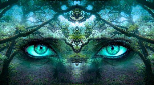 Fantasy, Wald
